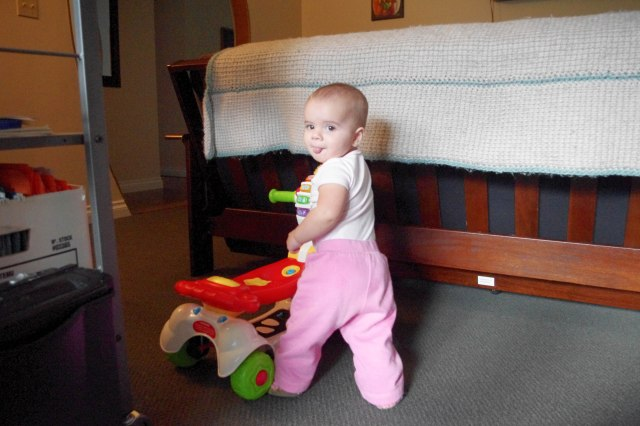 She is now pulling herself up to stand!