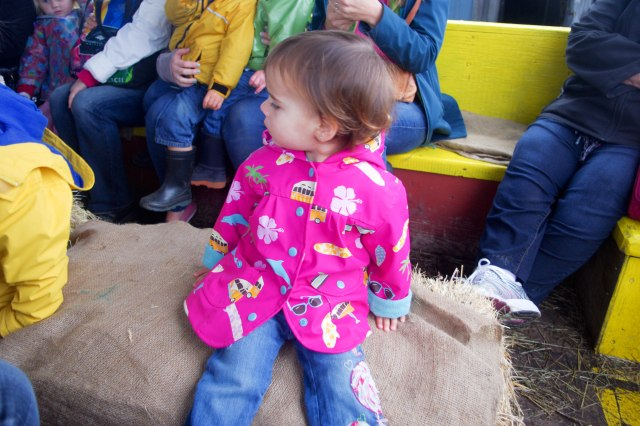 BeZU, enjoying the bumps on the hay ride