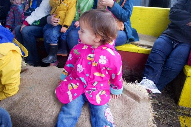 BeZU, enjoying the bumps on the hay ride