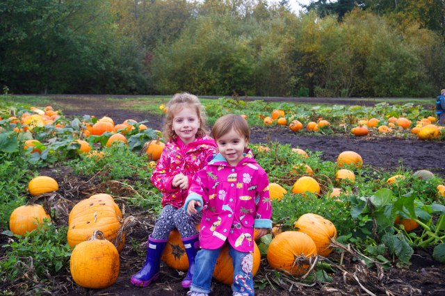 My very own Pumpkin Patch kids!