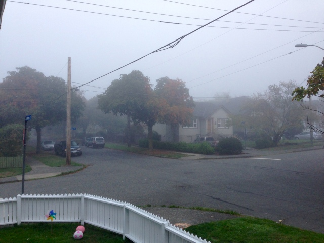 Fogtober at its best!