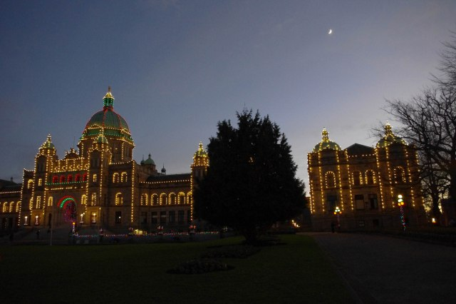 Some of the Parliament buildings, all lit up.