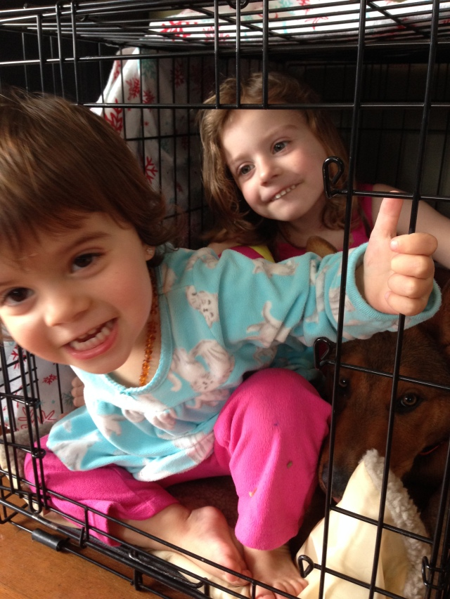 Let's see how many children and puppy we can fit in a medium crate!