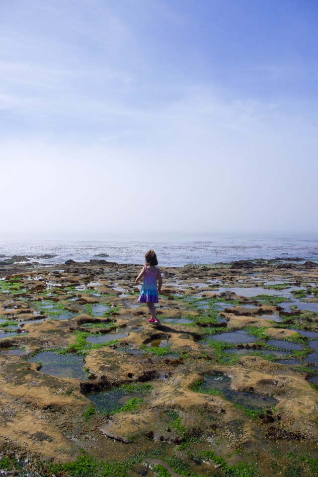 Rina navigating the tidal pools