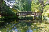 Bridge in the Japanese garden