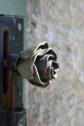 Door handle to the gate of the Rose garden. The fragrances coming from the garden were exquisite!
